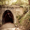 Photos of Fernleigh Track Newcastle